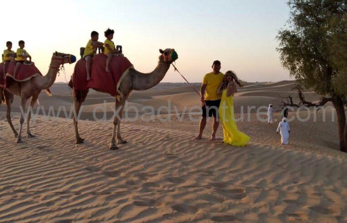Camels In Dubai Desert Safari